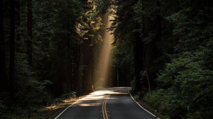 Misterius, Avanza Masuk Hutan Gunung Putri, Sopir & 7 Penumpang Tak Merasa Jalan Bersemak & Berbatu