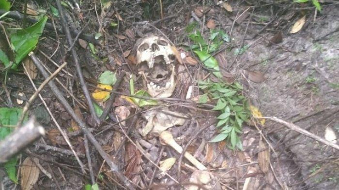 Identitas Kerangka Manusia Ompong Rahang Menganga di Gunung Pegat, Nama: Setu Wigyo Wiyono