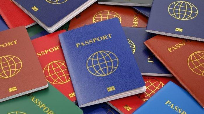 Apa Itu Paspor Diplomatik? Syarat Kepemilikan dan 6 Kelebihan Memiliki Paspor Diplomatik