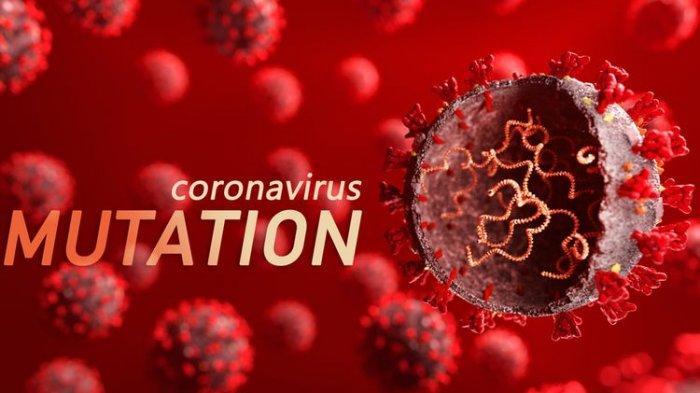 Varian Baru Corona Muncul Lagi, Corona N439K Lebih Menular dan Kebal Vaksin Covid-19