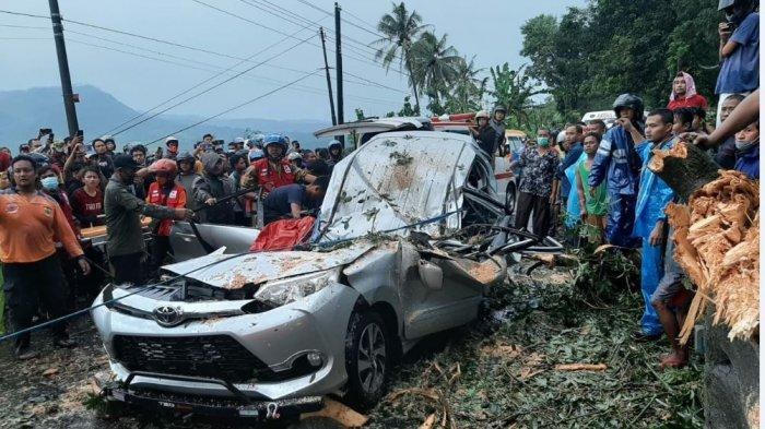 Kondisi mobil yang dinaiki delapan orang asal Desa Karangtengah, Kecamatan Cilongok, Banyumas, usai tertimpa pohon randu, di Jalan Raya Pemalang-Randudongkal, Sabtu (6/3/2021) sore.