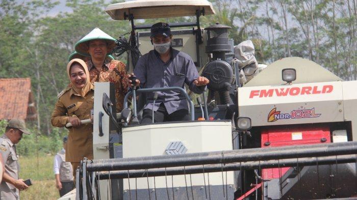 Mukodam Sebut Modernisasi Alat Pertanian Akan Menarik Generasi Milenial Jadi Pekerja Tani