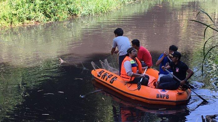 Anak Buaya Muara Muncul di Sungai Kuripan Pekalongan, Tim Gabungan Dikerahkan untuk Meringkus