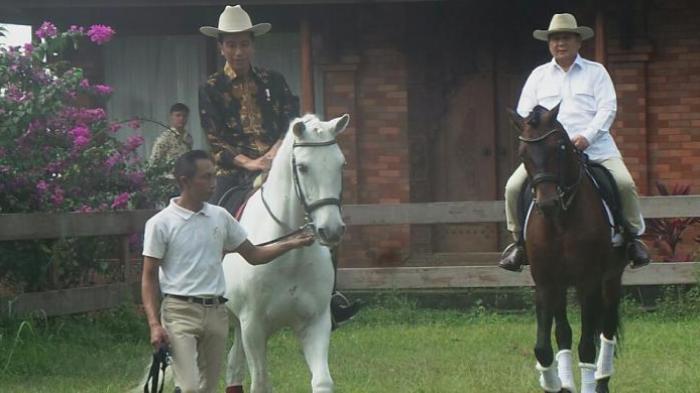 Diplomasi Kuda