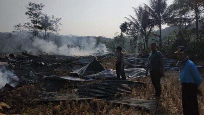 Kandang Terbakar di Purbalingga, Ribuan Ayam Mati Terpanggang