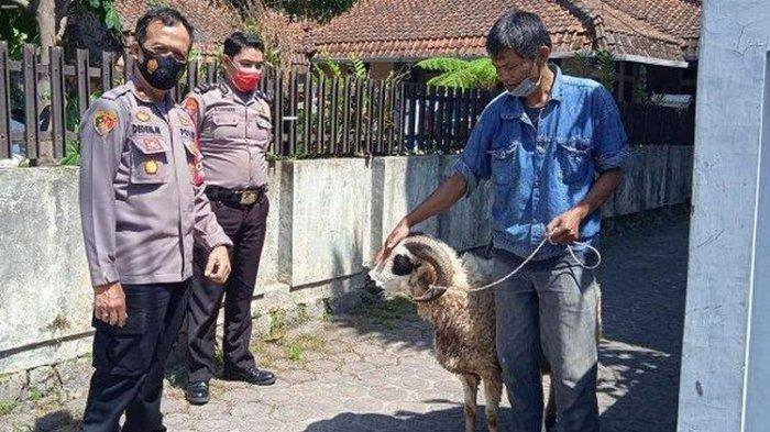 Baca Cerita Yadi Gagal Kurban karena Tabungan Dimakan Rayap, Kapolsek Patungan Belikan Domba