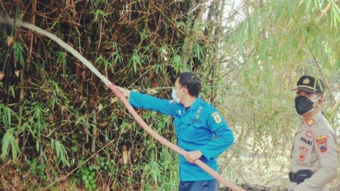 Kebakaran Rumpun Bambu Dekat Rumah Warga Desa Keben Bikin Panik Orang-orang