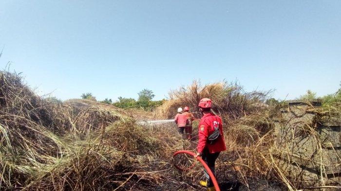 Kebakaran 'Bong Cino' Pekalongan Gara-gara Orang Buang Rokok