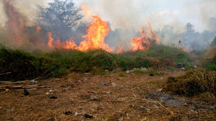 BREAKING NEWS, Kebakaran di Lahan Kosong Klipang Membesar dan Meluas