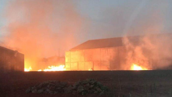 Kebakaran Hebat Melanda Gudang Mebel di Jepara, Kerugian Capai Rp 2 Miliar