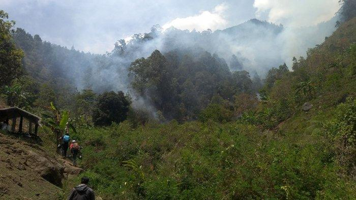 Pendaki Lawu Bakal Diingatkan Hati-hati Membuat Perapian, Jangan Sampai Bikin Kebakaran
