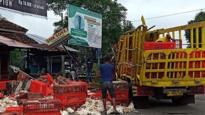 Kecelakaan Truk Ayam Selip di Ponorogo, Sopir Bernama Mardi Santoso Meninggal: Ngebut 100 Km/Jam