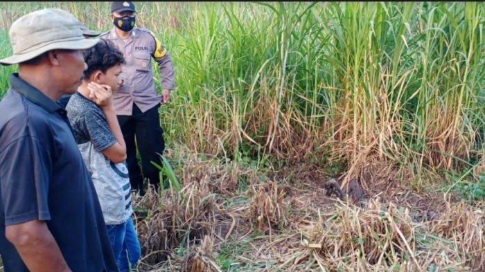 Hilang 2,5 Bulan, Warga Ngepungrojo Pati Ditemukan Tinggal Kerangka