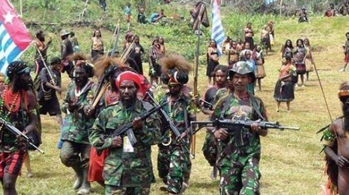 Janji Manis KKB untuk Menarik Warga Papua, Kini Tebuni Merasa Ditipu dan Minta Kembali ke NKRI