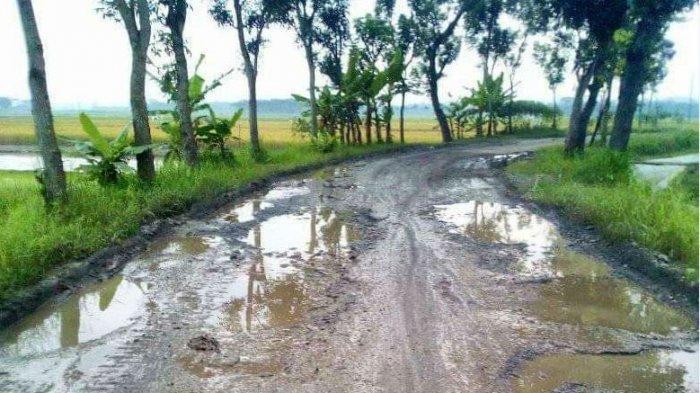 Pemkab Pemalang Butuh Rp 100 M untuk Perbaikan 298 Ruas Jalan dan 11 Peningkatan Infrastruktur