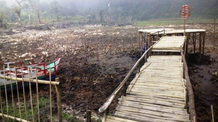 Dampak Kemarau, Telaga Sigebyar Mangunan Kabupaten Pekalongan Mengering