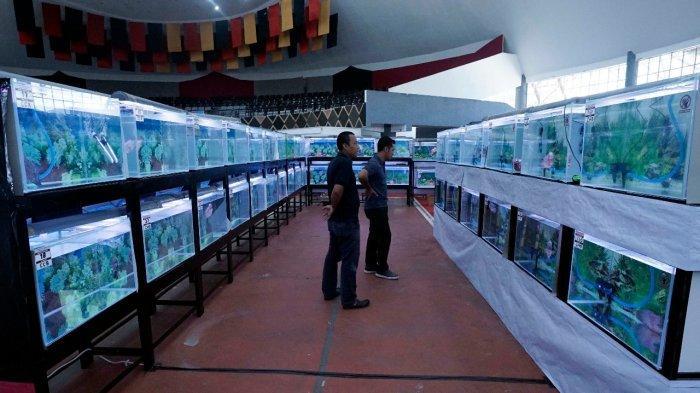 Hari Ikan Nasional Ke-5 di Jawa Tengah Akan Dipusatkan di Boyolali
