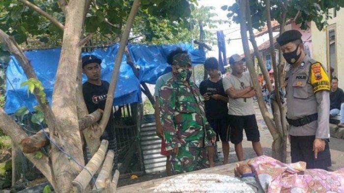Korban meninggal dunia akibat serangan tawon vespa, dipindahkan dari lokasi kejadian ke pemukiman warga. Korban meninggal itu merupakan warga Kecamatan Warureja Tegal, yang tengah mencari rumput di Dusun Krasak, Desa , Kelurahan Sugihwaras, Pemalang, Sabtu (23/1/2021).