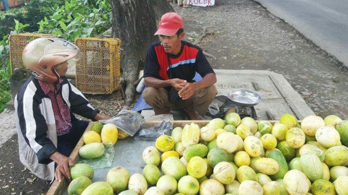 Penjual Timun Suri Musiman Saat Ramadan Laris Manis, Bisa Menjual Puluhan Kilogram Tiap Hari