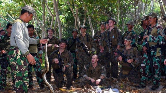 Marinir Amerika Latihan Perang Hutan di Banyuwangi, Diajari Cara Tangkap dan Masak Binatang Buas