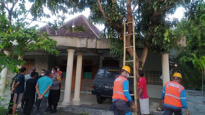 Orang-orang Lihat Mayat Sumadi Tersangkut di Atas Pohon Mangga: Pegang Gergaji