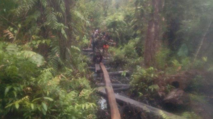 Penyebab Duel Maut di Hutan Singkil Mulai Terkuak, Rebutan Lahan Pengambilan Kayu