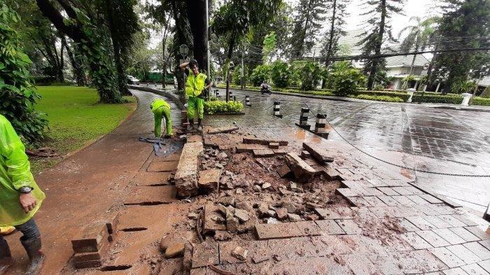 Setelah Hujan Reda, Pohon Besar Tumbang di Dekat Rumah Dinas Gubernur DKI Anies Baswedan