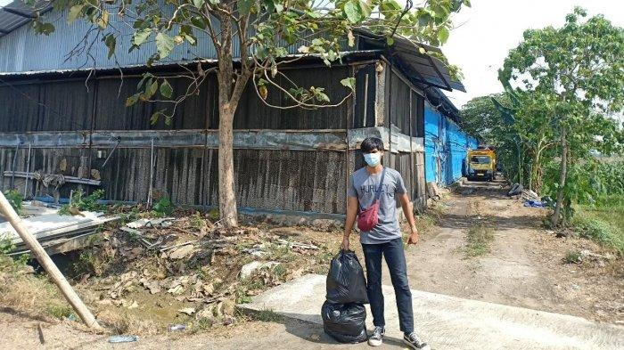 Limbah Membawa Berkah, Mahasiswa Peternakan Undip Ubah Kotoran Ayam Jadi Pakan Sapi