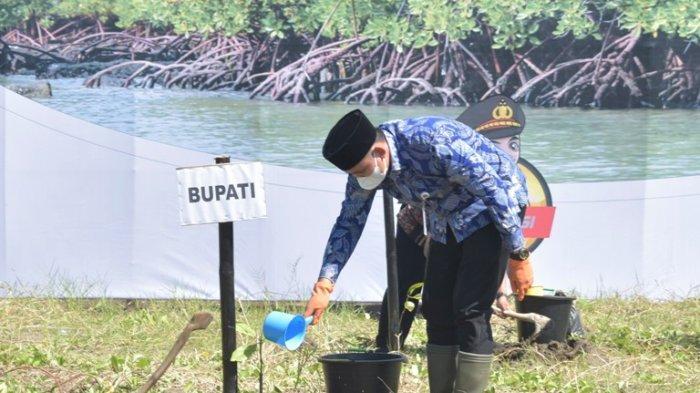 Sasar 70 Hektare Ekosistem Mangrove di Kendal yang Terdampak Abrasi, Bisa untuk Wisata di Masa Depan