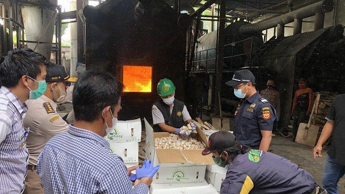 Musnahkan Impor 3.540 kg Bawang Putih melalui Pelabuhan Tanjung Emas