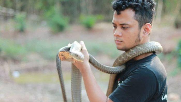 Tolak Jual Garaga Rp 350 Juta, Panji Petualang: Harga King Cobra Sebenarnya Murah