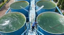 Atasi Kesulitan Pasokan Air di Musim Kemarau, PDAM Kajen Pantau Sumber Air