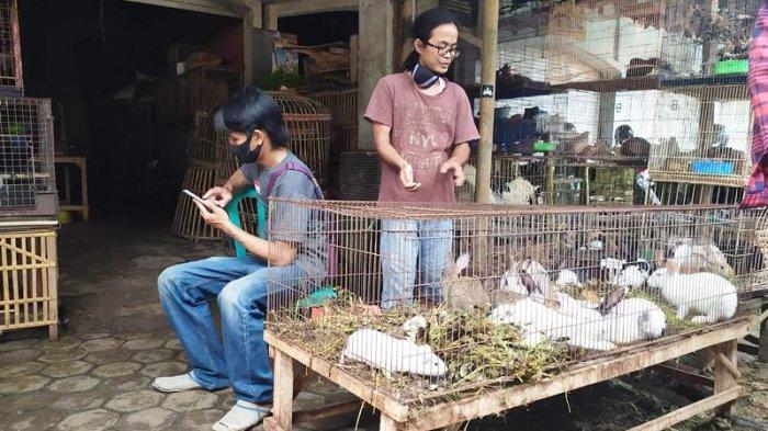 Dampak PPKM di Pasar Hewan Purbalingga, Pedagang Keluhkan Penjualan Turun Sampai 70 Persen
