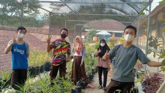Manfaatkan Lahan Kosong Sekolah, Komcil SMPN 2 Cimanggu Cilacap Garap Kebun Stroberi