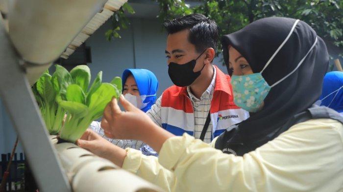 Menilik Cara Asyik Pertamina Cilacap Berbagi Ilmu Hidroponik