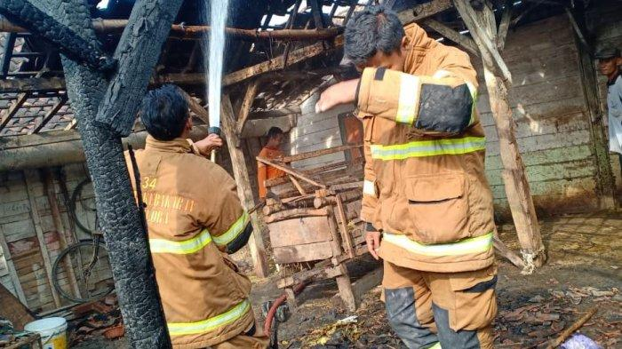 Sejumlah petugas pemadam kebakaran Kabupaten Blora tengah memadamkan api di kandang ternak di Desa Kedungringin, Kecamatan Tunjungan, Blora.
