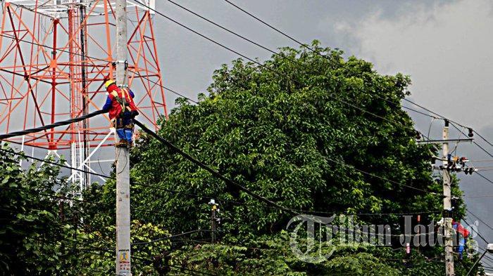 Hotline Semarang : Kabel PLN Tertutupi Pohon di Jalan Beteng