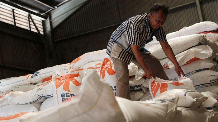Harga Beras dari Petani di Kabupaten Tegal Cuma Rp 7.300, Mereka Tolak Impor Beras