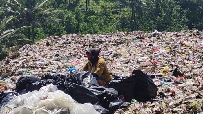 Pemulung Banjarnegara Merasa Kebal Corona, Tak Takut Sampah Medis: Kalau Pusing Olesi Balsem Sembuh