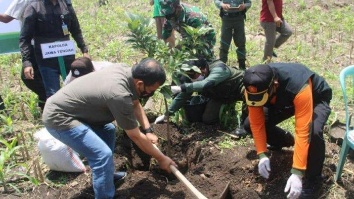 Penanaman pohon kelengkeng di lahan milik perhutani di Kecamatan Jenar, Sragen, Minggu (21/2/2022)