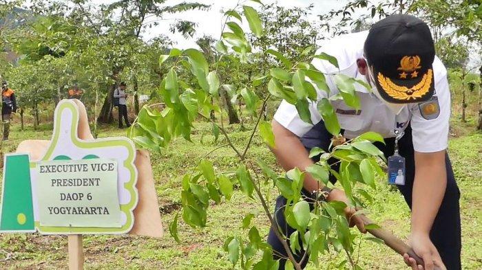 Penanaman pohon oleh Pemkab Temangung dan PT KAI di lereng Gunung Sumbing untuk meningkatkan ketersediaan air baku bagi masyarakat, Kamis (28/1/2021).