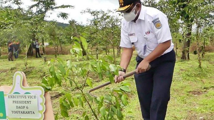 Program Sabuk Gunung di Temanggung Dimulai, 18 Ribu Bibit Pohon Ditanam