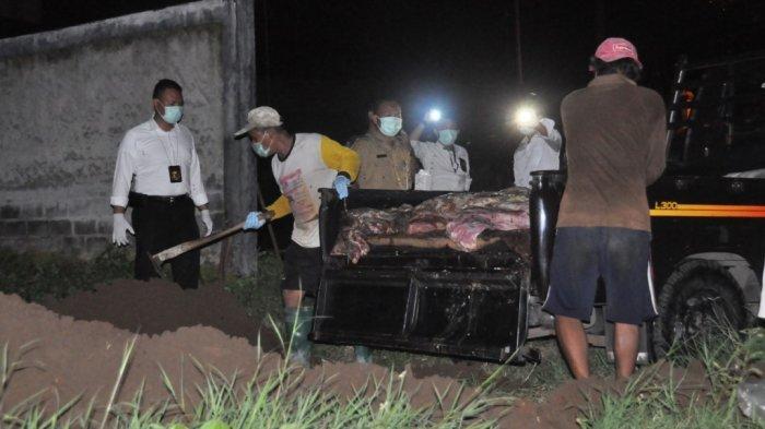 BREAKING NEWS: Polres Wonogiri Sita 270 Kilogram Daging Sapi Gelonggongan
