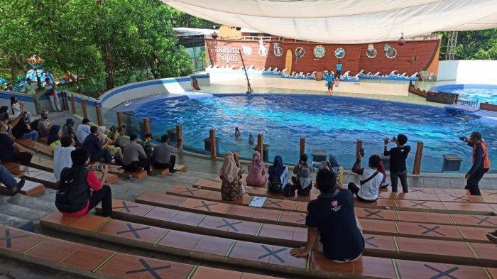 Pengelola Batang Dolphin Center 'Mbengok' Tiada Pemasukan Selama PPKM Darurat