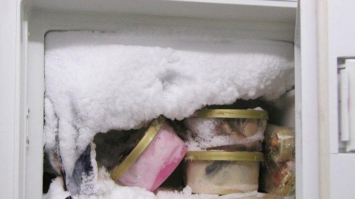 3 Kebiasaan Sepele yang Bikin Bunga Es Di Freezer Cepat Balik Lagi dan 3 Cara Mencairkannya