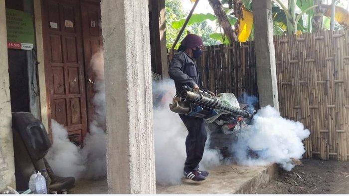 DKK Minta Masyarakat Waspadai Perubahan Cuaca yang Picu Tumbuh Kembang Jentik Nyamuk