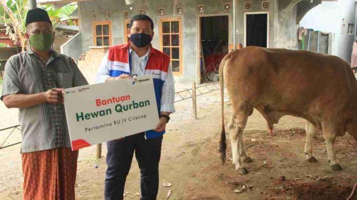 Penyerahan hewan qurban bantuan sapi dan kambing qurban