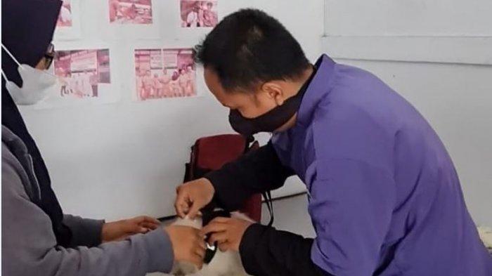 DKPPP Kota Tegal Adakan Vaksin Rabies Gratis, Berlangsung 4 Hari