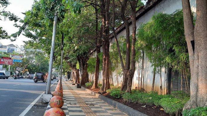 Pemkot Semarang Sudah Tanam 10 Ribu Lebih Pohon, Setiap Kawasan Ditanam Jenis Berbeda