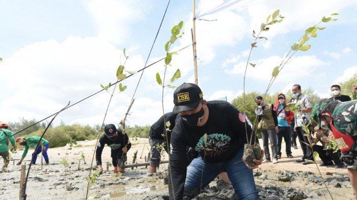 Perwakilan manajemen PTSG (kaos hitam, tengah) melakukan penanaman mangrove di Pantai Wates, Tasikharjo, Kaliori.